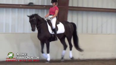 They now canter after making sure he is responsive. - Part 2 by Dressage Today Online
