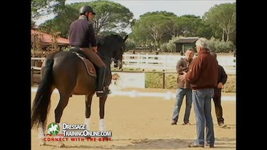 Jan talks about his need to create more impulsion with his calves that ends up in the contact with the hand. - Part 2 by Dressage Today Online
