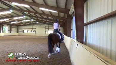 After a walk break, they talk about schooling half steps. - Part 2 by Dressage Today Online