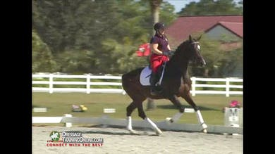 Christoph Hess - Introducing Flying Changes, Part 1 by Dressage Today Online