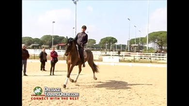 Jan Bemelmans - Rhythm in Passage, Part 2 by Dressage Today Online