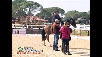 Jan Bemelmans - Rhythm in Passage, Part 3 by Dressage Today Online