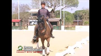 Jan Bemelmans - Rhythm in Passage, Part 4 by Dressage Today Online