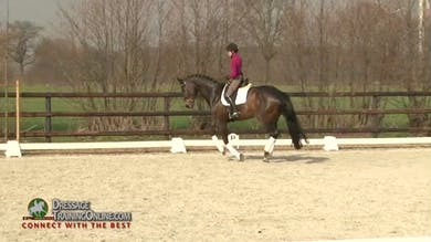 Step by step she continues the canter work building up to the flying changes. - Part 2 by Dressage Today Online
