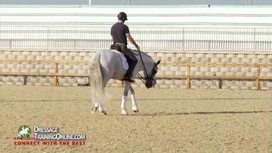 He shows a great example of collecting the steps while remaining in the same frame. - Part 1 by Dressage Today Online