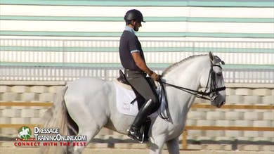 He reestablishes the trot, checks the half halt and then asks for an extended trot. - Part 3 by Dressage Today Online