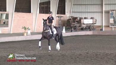 They now take the lunge line off and have the rider on her own. - Part 4 by Dressage Today Online