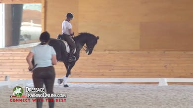 Nicholas includes canter half pass, counter canter and the threes in his ride as well as the medium canter, and shows great collection. - Part 3 by Dressage Today Online