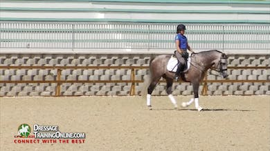 In the walk break Daniel offers great tips on what to do if the horse becomes tense. - Part 3 by Dressage Today Online