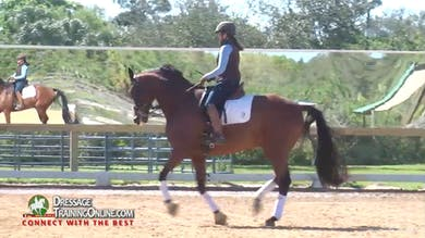 They continue the canter, testing that he can both collect and do the medium with the same contact. - Part 2 by Dressage Today Online