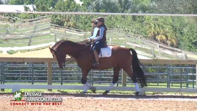 In the trot, his best gait, Chrissa is asking for more bounce, showing more expression in the shoulder in and mediums. - Part 3 by Dressage Today Online