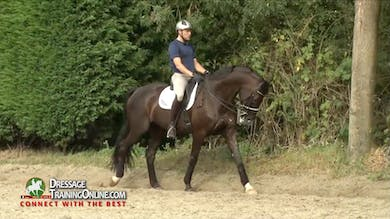 Laurens now goes to the piaffe and passage. - Part 3 by Dressage Today Online
