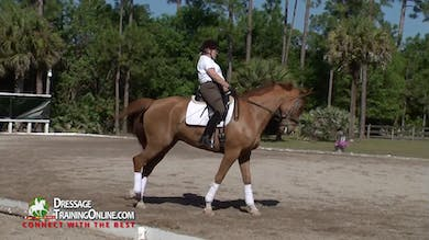 Nancy reviews the step by step aids needed to make this exercise successful. - Part 3 by Dressage Today Online