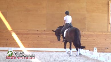 Nicholas Fyffe brings us this great example of the stretchy trot and the importance of this move in creating suppleness in preparation for more advanced work. by Dressage Today Online