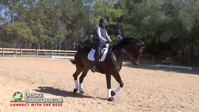 They reverse directions and continue to work on the shoulder in, making sure that he isn't using too much angle to avoid pushing. - Part 2 by Dressage Today Online