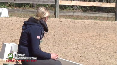 Now that the horse is warmed up they go back to the shoulder in, making sure that the angle is appropriate for the horse to push into the outside rein. - Part 3 by Dressage Today Online