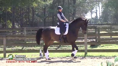 Laura has her now repeat the haunches in in the trot, making sure that he bends through his whole top line. - Part 4 by Dressage Today Online
