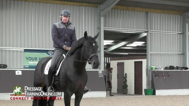 Gareth Hughes brings us an 11 year old stallion to show how to train for the trot half pass. - Part 1 by Dressage Today Online