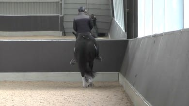 Gareth emphasizes how important it is to teach the horse to move forward through the movement and not stiffen and lose the gait. - Part 2 by Dressage Today Online