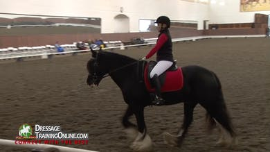 Debbie McDonald and Janet Foy lead this session at the Oregon Dressage Societies' Fall Festival with Para Equestrian riders. - Part 1 by Dressage Today Online