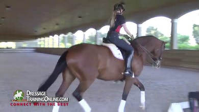 Catherine gives this open training day to the students of Lendon Gray - Part 1 by Dressage Today Online