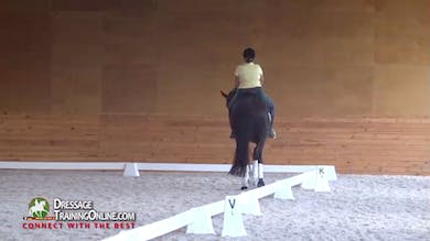 They work through the extended and collected walk with the poll in the correct position for the movement. - Part 2 by Dressage Today Online
