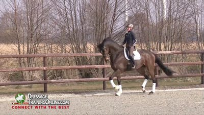 Helen Langehanenberg - Working Toward Prix St. Georges - Part 2 by Dressage Today Online