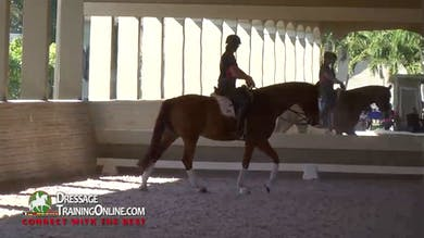 Catherine Haddad - Riding the Grand Prix Horse, Part 1 by Dressage Today Online