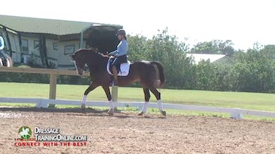 Chrissa Hoffman - Forward to the Bridle, Part 1 by Dressage Today Online