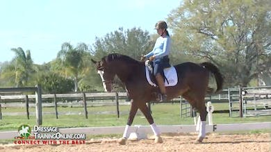 Chrissa Hoffman - Forward to the Bridle, Part 2 by Dressage Today Online
