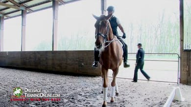 Laura Graves - Responsiveness, Part 1 by Dressage Today Online