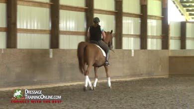 Laura Graves - Responsiveness, Part 2 by Dressage Today Online