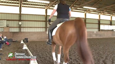 Laura Graves - Responsiveness, Part 3 by Dressage Today Online
