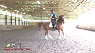 Laura Graves - Responsiveness, Part 4 by Dressage Today Online