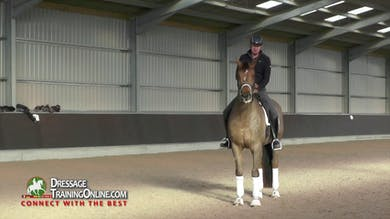 Gareth Hughes - Flying Changes, Part 1 by Dressage Today Online