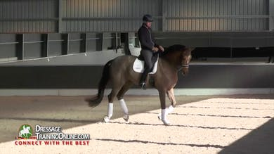 Gareth Hughes - Flying Changes, Part 2 by Dressage Today Online