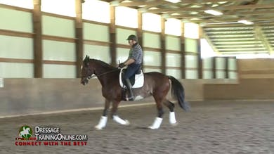 Laura works with this pair on achieving real connection. - Part 1 by Dressage Today Online