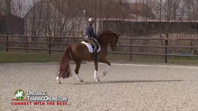Helen asks for him to carry his weight on his hind legs in the canter using her weight aids. - Part 1 by Dressage Today Online