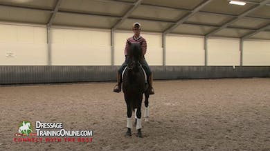 Joyce Heuitink begins with a long and low frame, asking him to stretch even with distractions from outside the arena. - Part 1 by Dressage Today Online