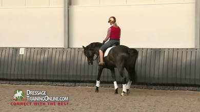 While he takes a stretchy walk break, Joyce makes sure he is forward and willing to stretch to each side. - Part 2 by Dressage Today Online