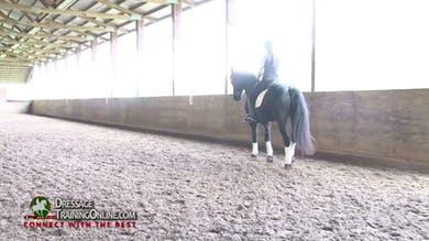 They next work on the trot with Laura helping her find a trot that is taking the rider forward without being quick. - Part 3 by Dressage Today Online
