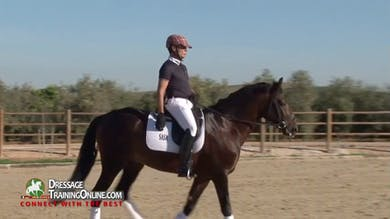 Juan Manuel rides a five year old Lusitano stallion from Brazil, showing us his training session starting with a relaxed walk. - Part 1 by Dressage Today Online