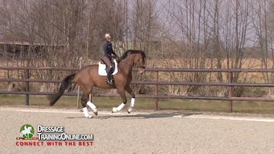 Helen Langehanenberg  rides a seven year old PSG gelding who has already had the chance to warm up, so they jump right into the canter work. - Part 1 by Dressage Today Online