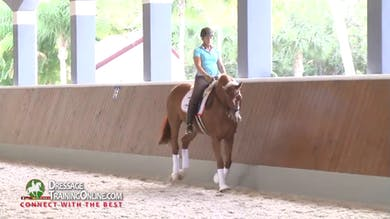 Catherine Haddad brings us an expert lesson on riding the canter zig zag and the skills required to perform this tricky movement. - Part 1 by Dressage Today Online