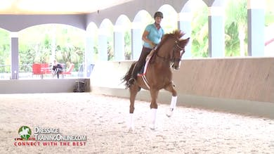 Catherine Haddad - Canter Zig-Zag, Part 2 by Dressage Today Online