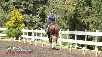 In this session Cesar begins by helping an advanced horse in the warm up with keeping more active while staying soft in the front. by Dressage Today Online