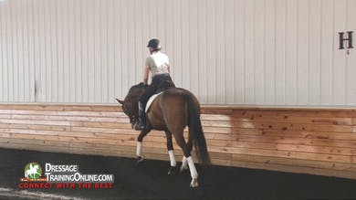 Courtney King-Dye begins this session by introducing the rider and the main goal for the lesson - increasing the responsiveness to the half halt. - Part 1 by Dressage Today Online