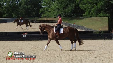 "Catherine Haddad coaches a ""green"" PSG horse, talking through all the points that the rider needs to check before entering the arena to rider their test. - Part 1 by Dressage Today Online"