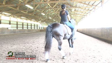They work on the shoulder in at the trot, and going to the left Laura has them ride with counter flexion in a haunches out. - Part 2 by Dressage Today Online