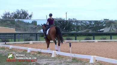 Continuing in the canter, Chrissa has the rider do transitions within the gait while keeping the rhythm. by Dressage Today Online